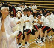 学園祭&体育大会 DVD/BD